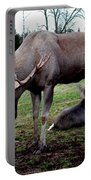 Moose Rest Portable Battery Charger