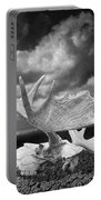 Moose Skull On Parched Earth Portable Battery Charger