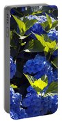 Mophead Hydrangeas Dry Brushed Portable Battery Charger