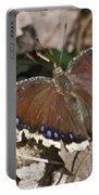 Morning Cloak 7580 Portable Battery Charger