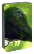 Morning Dew Figs Portable Battery Charger