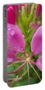 Morning Dew On Pink Cleome Portable Battery Charger
