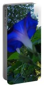 Morning Glory 02 Portable Battery Charger