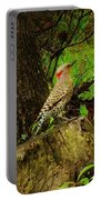 Morning Northern Flicker Portable Battery Charger