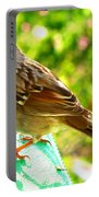 Morning Sparrow II Portable Battery Charger