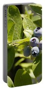 Morning Sun On Blueberries Portable Battery Charger
