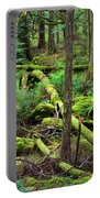Moss And Fallen Trees In The Rainforest Of The Pacific Northwest Portable Battery Charger