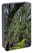 Moss Covered Trees Portable Battery Charger