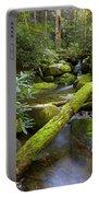 Moss Flourishing Portable Battery Charger