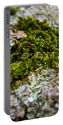 Moss In The Middle Portable Battery Charger