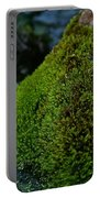 Mossy River Rock Portable Battery Charger
