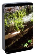 Mossy Waterfall On Mushroom Rock Portable Battery Charger