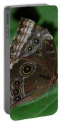 Moth I 2403 Portable Battery Charger