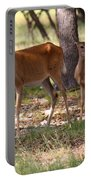 Mother And Yearling Deer Portable Battery Charger