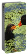Mother Common Gallinule Feeding Baby Chick Portable Battery Charger