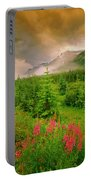 Mount Amery And Fireweed Portable Battery Charger
