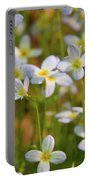 Mountain Flowers 5534 Portable Battery Charger