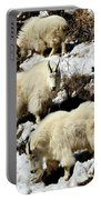 Mountain Goat Trio Portable Battery Charger