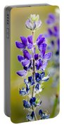 Mountain Lupine Glacier National Park Portable Battery Charger