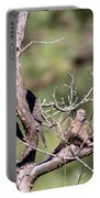 Mourning Dove - Board Of Directors Portable Battery Charger