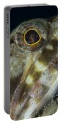Mouth Of A Variegated Lizardfish, Papua Portable Battery Charger