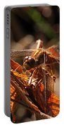 Ms Damselfly A La Fall Mode Portable Battery Charger