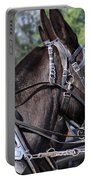 Mule Days - Benson - A Pair Of Aces - Mules Portable Battery Charger