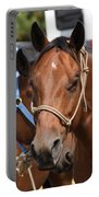 Mule Days Benson Portable Battery Charger