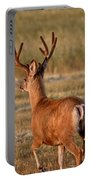 Mule Deer Buck In An Alberta Field Portable Battery Charger
