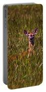 Mule Deer In Wheat Field, Saskatchewan Portable Battery Charger