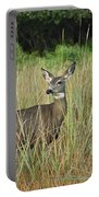 Mule Deer Winthrop Wa 9176 Portable Battery Charger