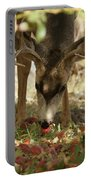 Mulie Buck 4 Portable Battery Charger