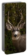 Mulie Buck Portable Battery Charger