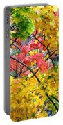 Multicolored Maple Portable Battery Charger