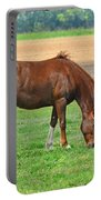 Munching Sweet Spring Grass I Portable Battery Charger