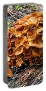 Mushroom Flower Portable Battery Charger