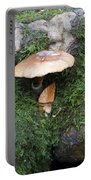 Mushroom In Moss Portable Battery Charger