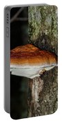 Mushroom Portable Battery Charger