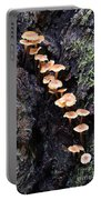 Mushroom Parade Portable Battery Charger