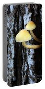Mushrooms 3 Portable Battery Charger