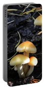 Mushrooms 5 Portable Battery Charger