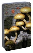 Mushrooms In Relief  Portable Battery Charger