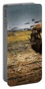 Muskox Ovibos Moschatusin The Northwest Portable Battery Charger