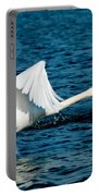 Mute Swan Gaining Momentum Portable Battery Charger