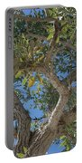 Naples Tree Portable Battery Charger