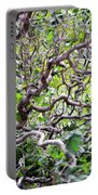 Natural Abstract 3 Portable Battery Charger