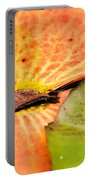 Natural Abstract 40 Portable Battery Charger