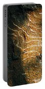 Nature's Abstractions IIi Portable Battery Charger