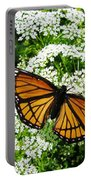 Natures Beauty Portable Battery Charger