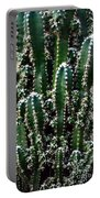 Nature's Cactus Abstract 2 Portable Battery Charger